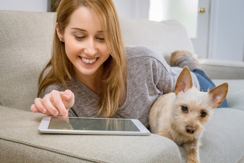 ¿Qué razas de perro son ideales si vives sol@?